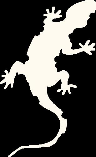 Logo Lezard Climb Tradate (Varese)